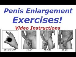 How much you can enlarge your penis exercises