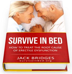 Survive In Bed Review