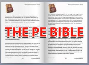 Pe Bible Plan